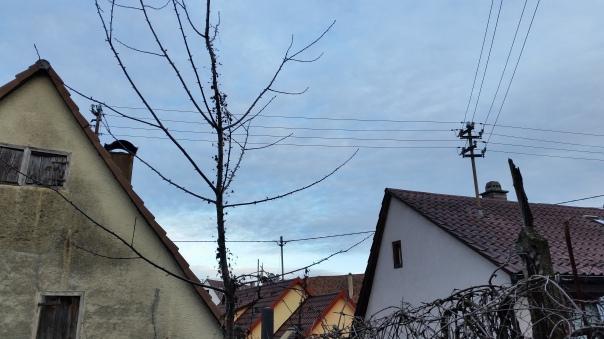 07 14.01.16 Himmel über Enzberg ca. 15.50 Uhr