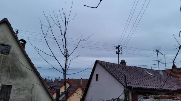 09 14.01.16 Himmel über Enzberg ca. 17.00 Uhr