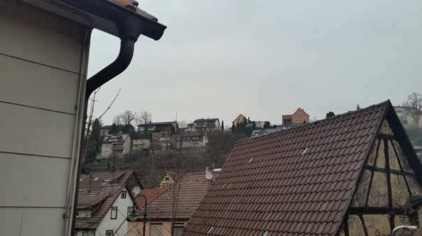 03 29.02.16 Grauer Tag in Enzberg