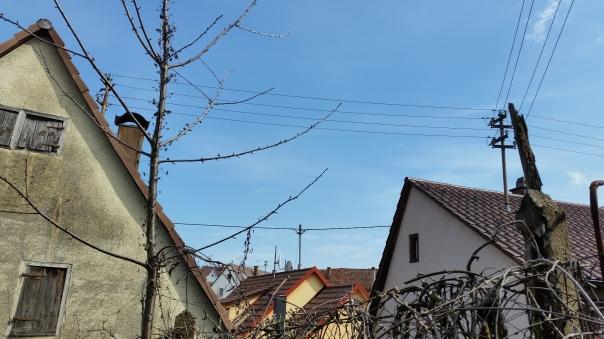 03 Enzberger Himmel 31.03.16