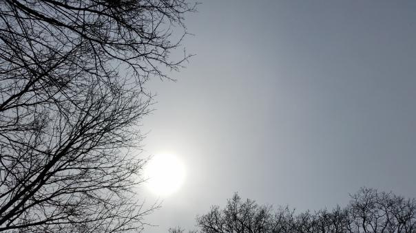 08 Enzberger Himmel 31.03.16