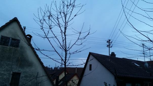 Enzberg, 31.03.17 um ca. 20 Uhr 2